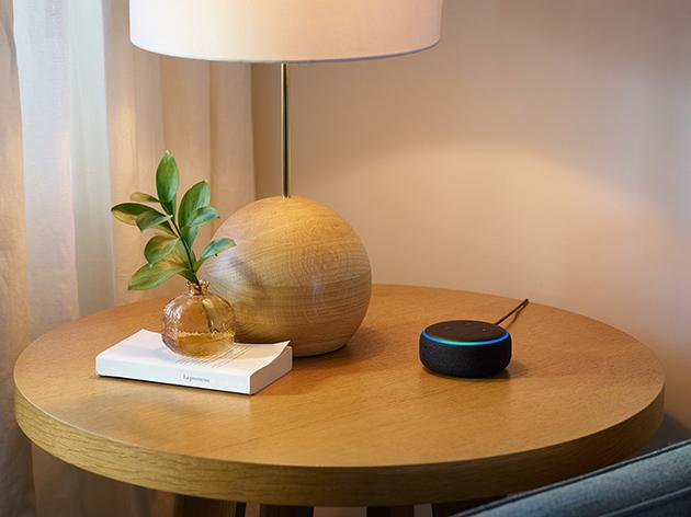 Smart Speaker, una gara a due